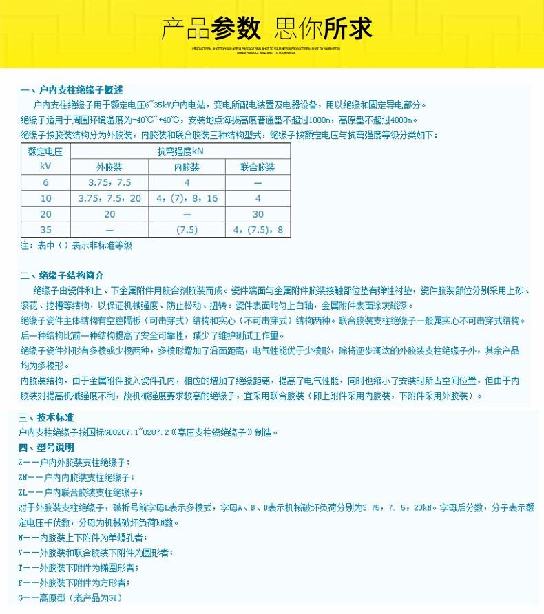 ZA-10T_06.jpg